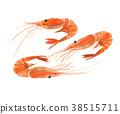 纽扣虾 38515711