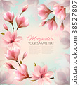 Abstract spring background with beautiful magnolia 38527807