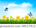 Spring nature background with green grass,  38527812