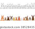矢量 动物 小动物 38528435