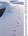 下雪 雪 下雪的 38529231