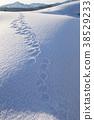 下雪 雪 下雪的 38529233