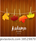 Autumn leaves on wooden background 38529870