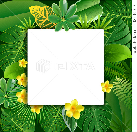 Bright tropical background with jungle plants. 38530017