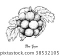 Fresh Pione Grapes on White Background 38532105