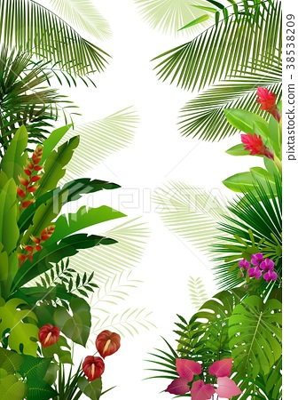 Exotic tropical background 38538209