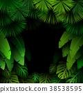 vector foliage tropical 38538595
