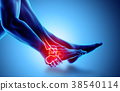 Ankle painful - skeleton x-ray. 38540114