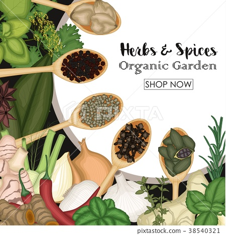 Different cooking herbs and spices in wooden spoon 38540321