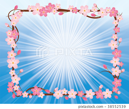 cherry blossom, cherry tree, flower 38552539