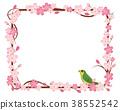 樱花的例证|佐仓花圈和玫瑰装饰品正方形|春天图象的例证,背景,背景 38552542