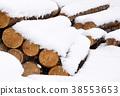 목재, 재목, 통나무 38553653