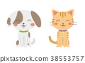 웃고있는 개와 고양이 38553757