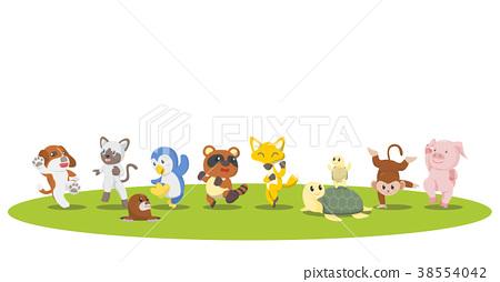 animal, animals, sportive 38554042
