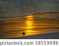 Golden sunset on the ocean shore. The sun is 38559686