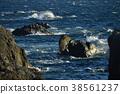 muroto peninsula, rocky, wave 38561237