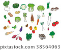 Assortment of vegetables 38564063