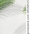 foliage, leaf, leafs 38568425