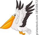 Cartoon pelican flying  38568672