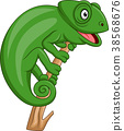 Cartoon green chameleon 38568676