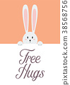 White rabbit with free hugs sign 38568756