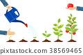 grow, growth, plant 38569465