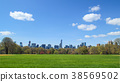 View of Central park at sunny spring day 38569502