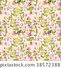 蘋果 花 花朵 38572388