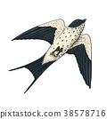 bird, vector, art 38578716