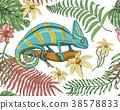 chameleon, vector, lizard 38578833