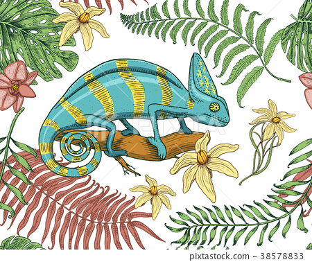 Chameleon Lizard, tropical flowers, seamless 38578833