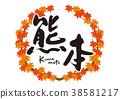 枫树 枫叶 红枫 38581217