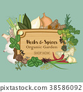 Collections of spice and herb with plank wooden tr 38586092