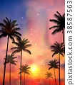 Silhouette of palm tree when of sunset 38587563