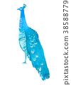 鳥兒 鳥 顏色 38588779