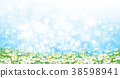 flower, daisy, nature 38598941