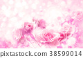 Pink roses flowers, bokeh  background. 38599014