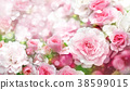 Blossoming roses flowers  background. 38599015