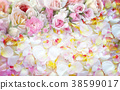 Roses flowers  background. 38599017