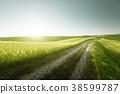 Tuscany sunny road, Italy 38599787