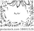 Asparagus Fern Fruit and Arrayan Fruits 38601526