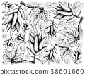 Hand Drawing Background of Ripe Elongated Grapes 38601660