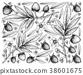 Hand Drawn Background Fresh Atherton Raspberries 38601675