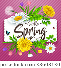Hello Spring background with beautiful flower and  38608130