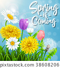 Spring is coming. Beautiful meadow flowers on sunl 38608206