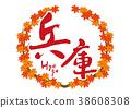 hyogo, calligraphy writing, maple 38608308