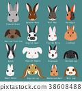 矢量 动物 兔 38608488