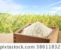 일본의 농업 38611832