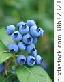 블루 베리 38612321