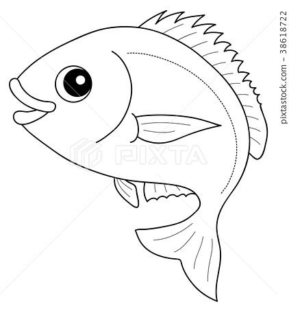 Snapper Coloring Book Fish 38618722